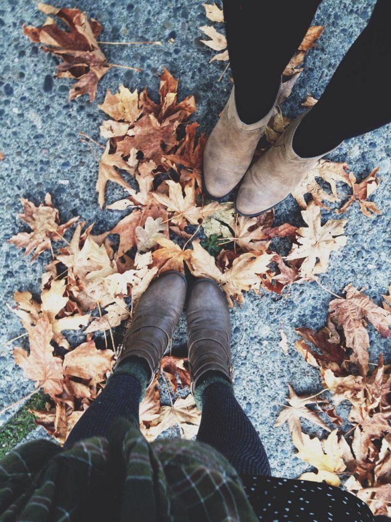 november fall leaves